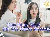 True Beauty Eps 5 Sub Indo Nonton Streaming